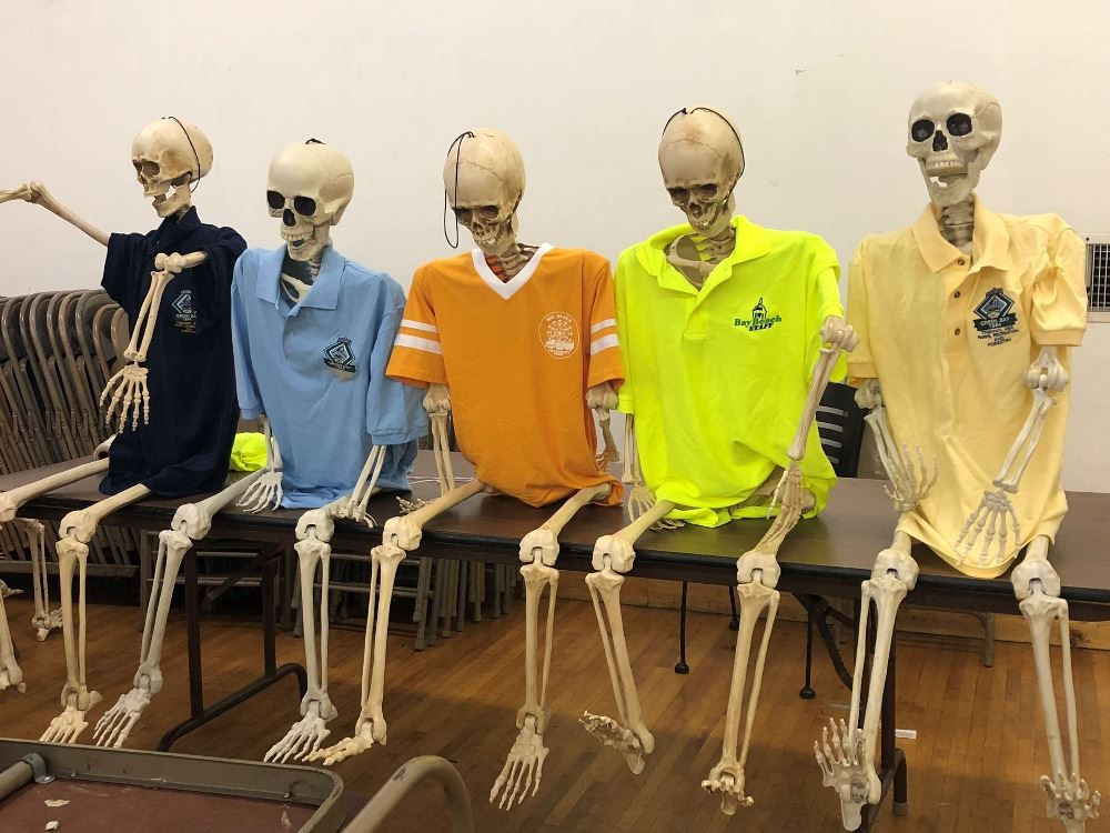Skeletons in Employee Shirts
